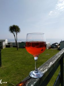 glass of TW Kemptons Blood Orange Gin